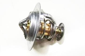 Термостат 1306100-EG01